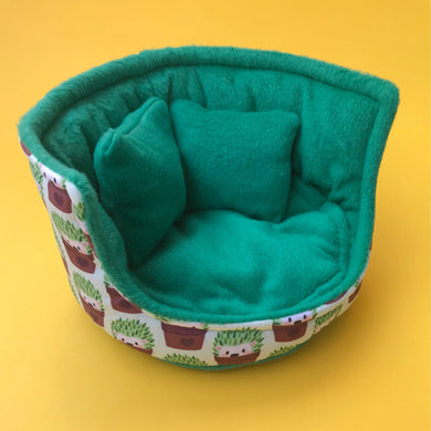 Cactus hedgehog cuddle cup. Pet sofa. Hedgehog sofa.