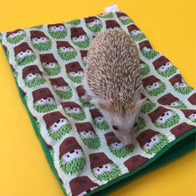 Load image into Gallery viewer, Cactus hedgehog snuggle sack. Small animal sleeping bag. Fleece lined.