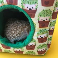 Load image into Gallery viewer, Cactus hedgehog cosy cube house. Hedgehog and guinea pig cube house. Padded fleece lined house.