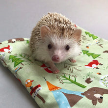 Load image into Gallery viewer, LARGE Camping animals snuggle sack. Snuggle pouch for guinea pigs