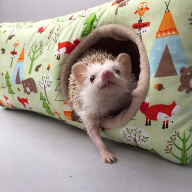 Camping animals corner house. Hedgehog and small pet cube house.