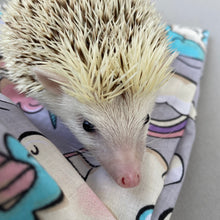 Load image into Gallery viewer, Pastel unicorn hedgehogs padded bonding bag, carry bag for hedgehog. Fleece lined pet tote. Pet travel bag.