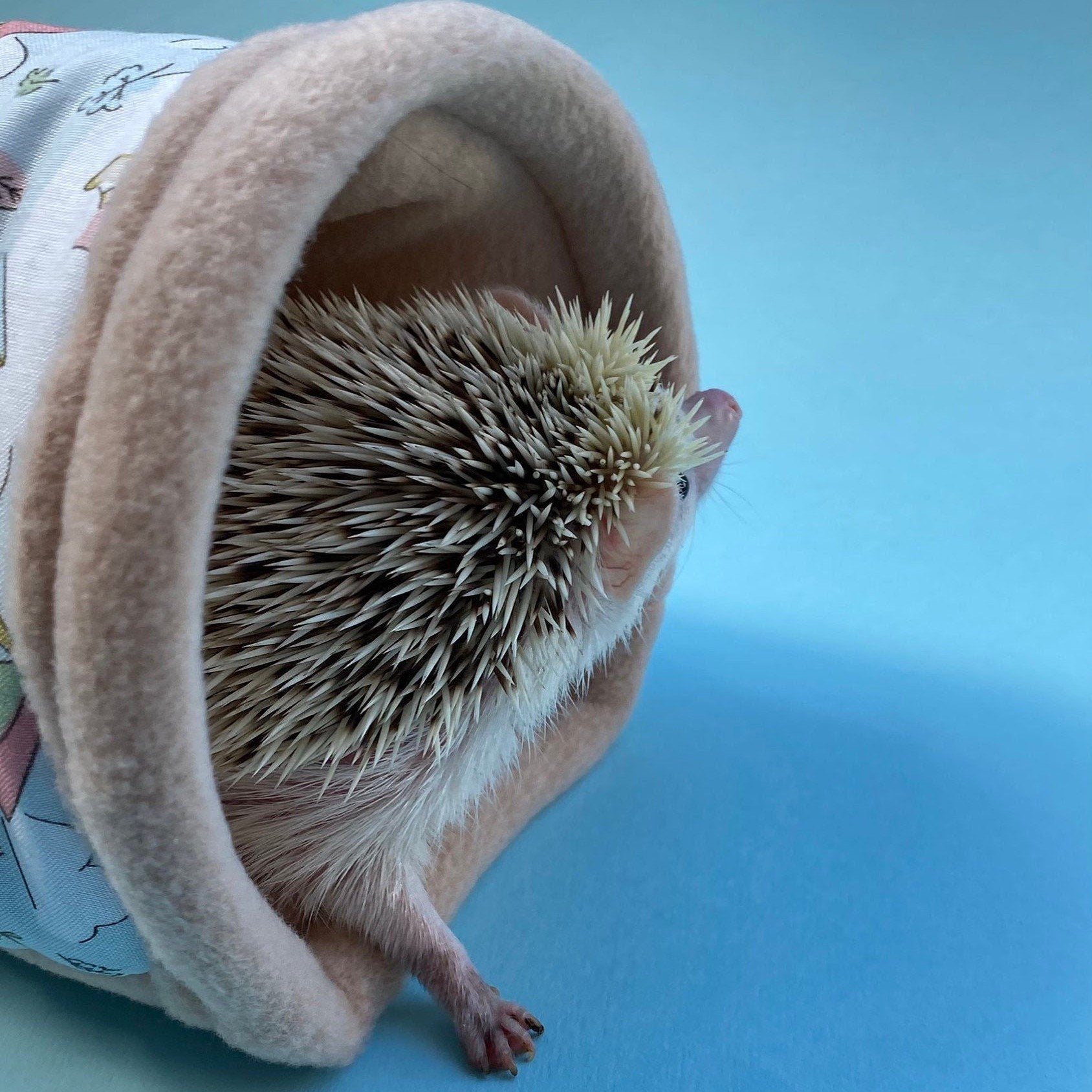Apple hedgehogs stay open tunnel Small pet cosy tunnel. Padded tunnel for hedgehogs Tube rats and small pets Padded fleece tunnel