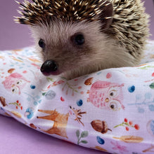 Load image into Gallery viewer, Hedgehog and friends full cage set. house, snuggle sack, tunnel cage set for hedgehogs.