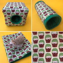 Load image into Gallery viewer, Cactus hedgehog full cage set. Cube house, snuggle sack, tunnel cage set.