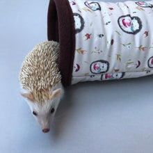 Load image into Gallery viewer, african pygmy hedgehog