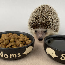 Load image into Gallery viewer, Ceramic hedgehog food and water bowls. Noms and slurp bowls.