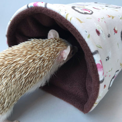 hedgehog bed