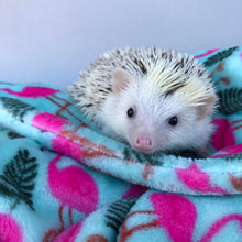 Load image into Gallery viewer, Cuddle fleece handling blankets for small pets like hedgehogs, guinea pigs and rats.