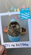 Load image into Gallery viewer, HUFFY BIRTHDAY: Hedgehog Birthday Box. Birthday gifts and props.