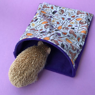 hedgehog cave