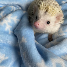 Load image into Gallery viewer, Snowflake cuddle fleece handling blankets for hedgehogs and small pets.
