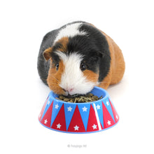 Load image into Gallery viewer, HayPigs!® Junior Food Tamer™ - Mini Food Bowl