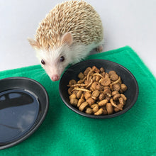 Load image into Gallery viewer, 1kg (2.20 lb) African pygmy hedgehog food mix. Hedgehog biscuit mix. Dry food mix.