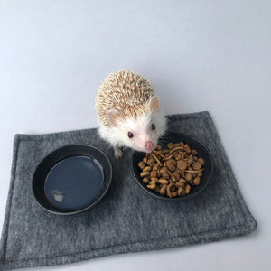 1kg (2.20 lb) African pygmy hedgehog food mix. Hedgehog biscuit mix. Dry food mix.