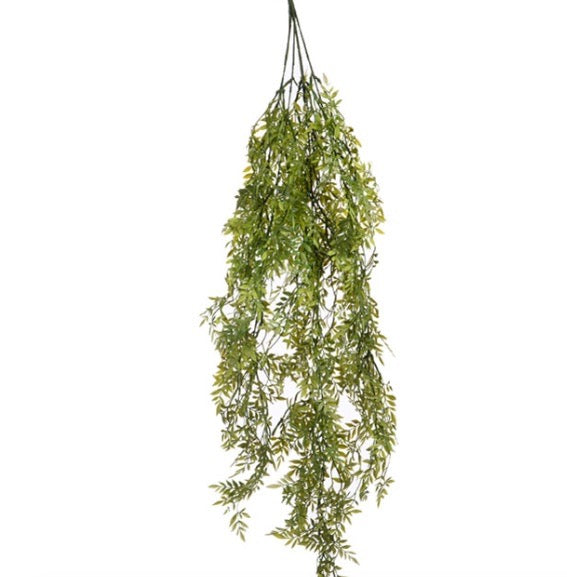 Hanging Grass Bush