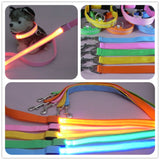 LED Light Up Dog Leash