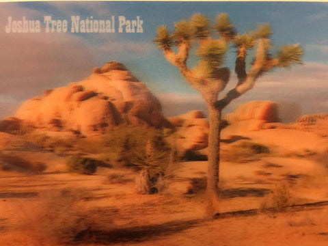 Joshua Tree 3-D Postcard