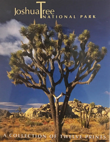 Joshua Tree National Park or Desert Wildflowers Postcard Packs