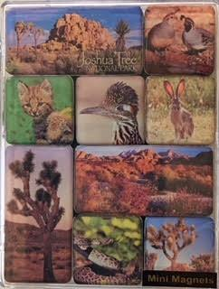 Joshua Tree Mini Magnets