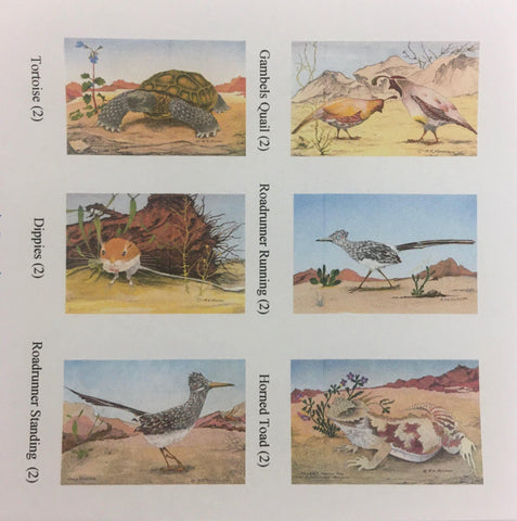 Desert Wildlife Note Card Pack