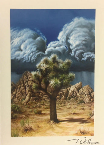 Joshua Tree Storm Note Card
