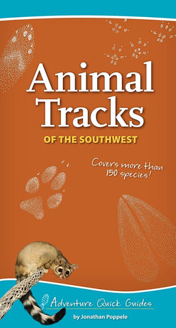 Animal Tracks Of The Southwest