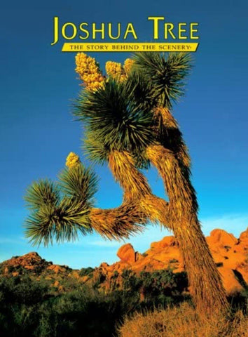 Joshua Tree The Story Behind The Scenery- English