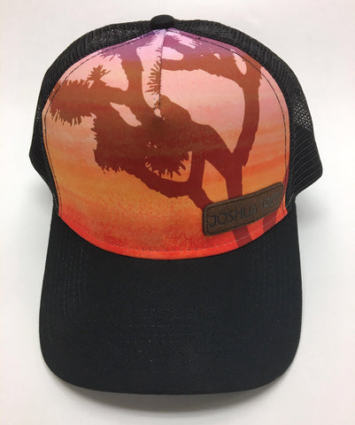 Multi/Colored Joshua Tree Hat