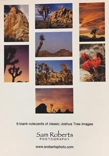 Joshua Tree National Park Note Cards Sam Roberts