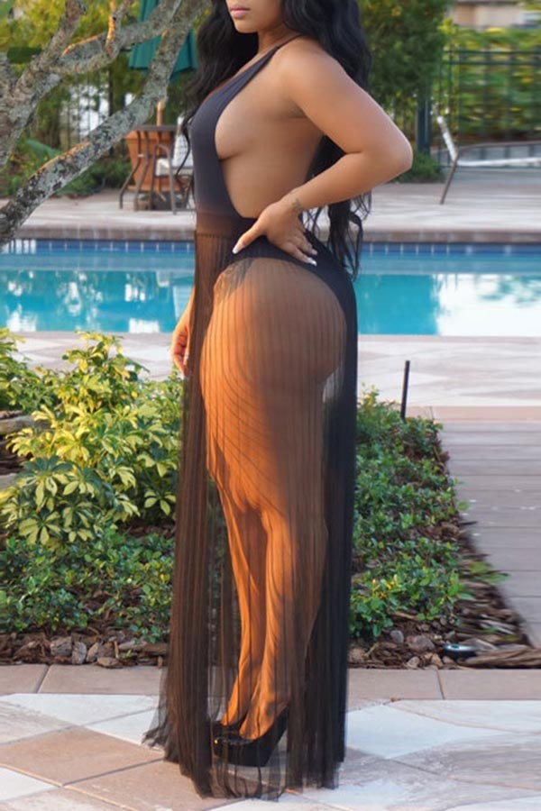 Sheer Pleated Maxi Skirt