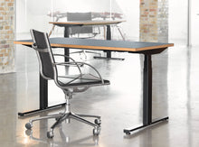 Load image into Gallery viewer, Subscription_OMNI_two_elevation_desks_with_office_chairs_Linak_linoleum_blue_tables_custom_oak