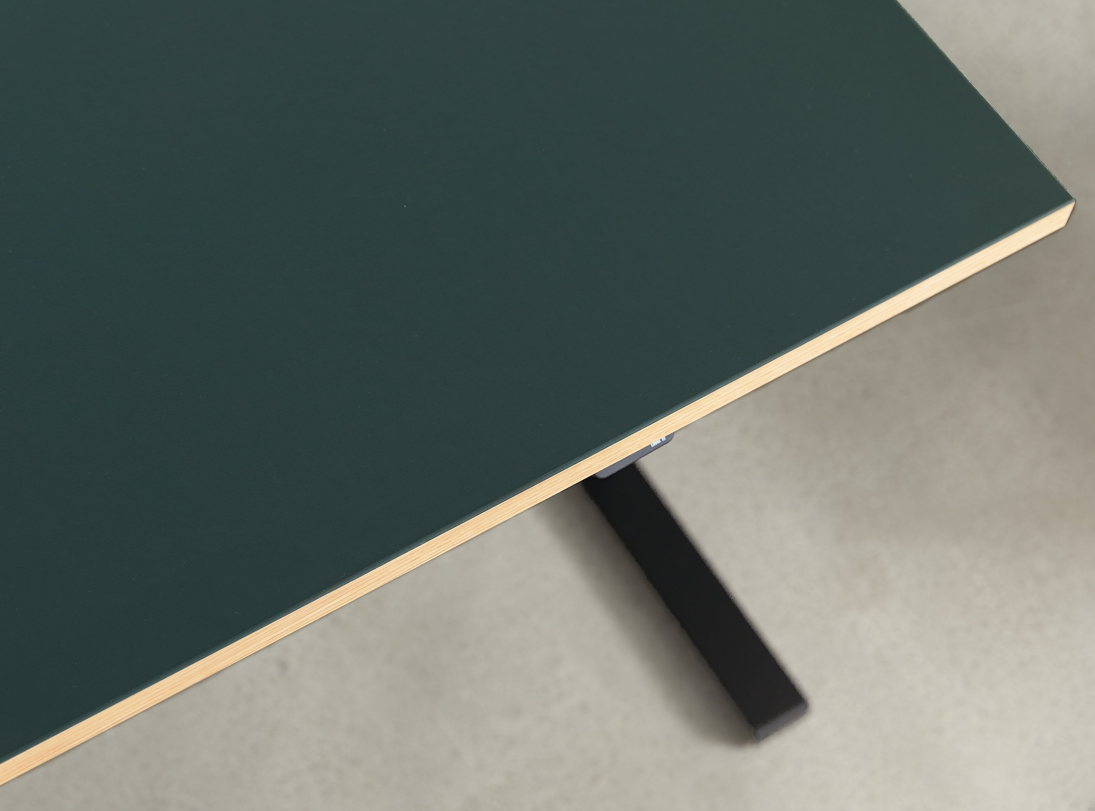 Subscription_OMNI_one_elevation_desk_two_legs_Linak_linoleum_green_table_custom_oak_frame_classy