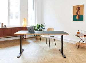 Subscription_OMNI_one_elevation_desk_with_office_chair_poster_Linak_linoleum_green_table_custom_oak_frame_lamp