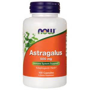 Now Astragalus