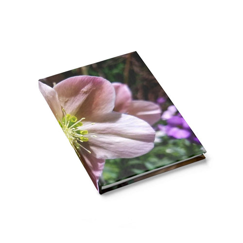 Positives.Biz ~ Exotic Hellebore ~ Journal - Ruled Line