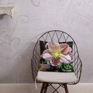 Positives.Biz ~ Exotic Hellebore ~ Square Pillow