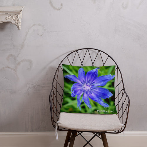 Positives.Biz ~ Lovely Chicory ~ Square Pillow