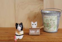 Load image into Gallery viewer, Kitty House Memo it Hoya (American short hair)