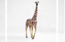 Load image into Gallery viewer, Nicole Paper - Giraffe