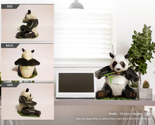 Load image into Gallery viewer, Nicole Paper - Panda
