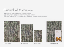 Load image into Gallery viewer, Woodpecker Note-White Birch (small:lined)