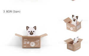 Kitty House Memo it Bori (Siam)
