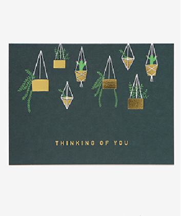 Message Card - Hanging Plant