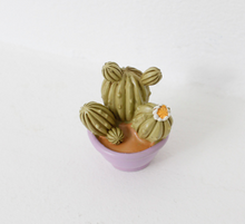 Load image into Gallery viewer, Miniature Cacti