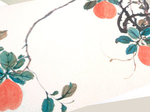 Wash Drawing Soft Persimmon