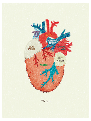 Map of the Heart Postcard