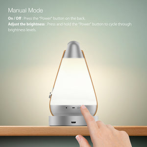 BlitzWolf Night light Roome Smart Night Light - Automate + App + Manual Control