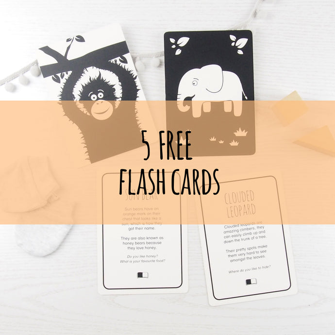 free baby flash card download
