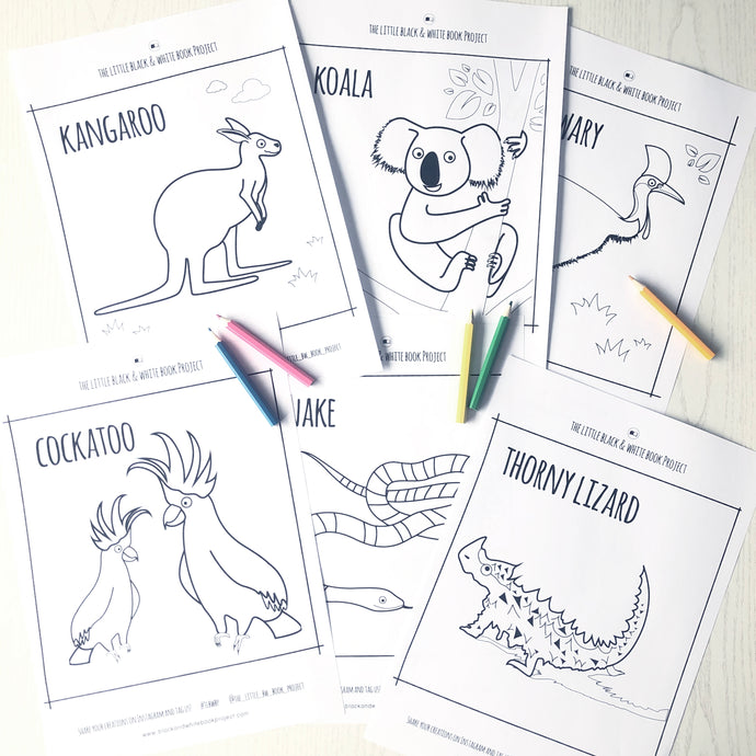 Australian animals colouring sheets
